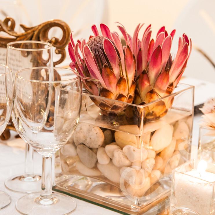 Long Table Dinner, George Bizos Fund, George Bizos, proteas, stones