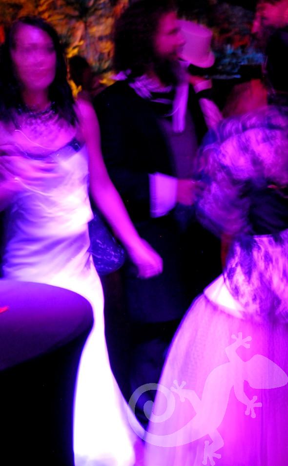 Moulin Rouge, party theme, Salamander design