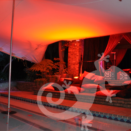 Salamander theme parties, stretch tent pool chill lounge