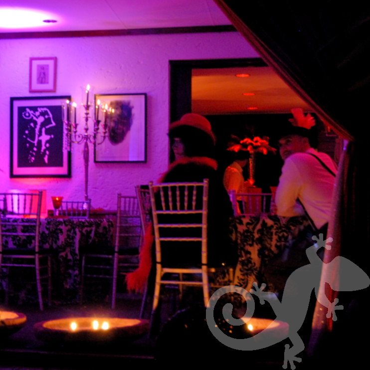 Moulin Rouge, decor, ambient lighting, house party